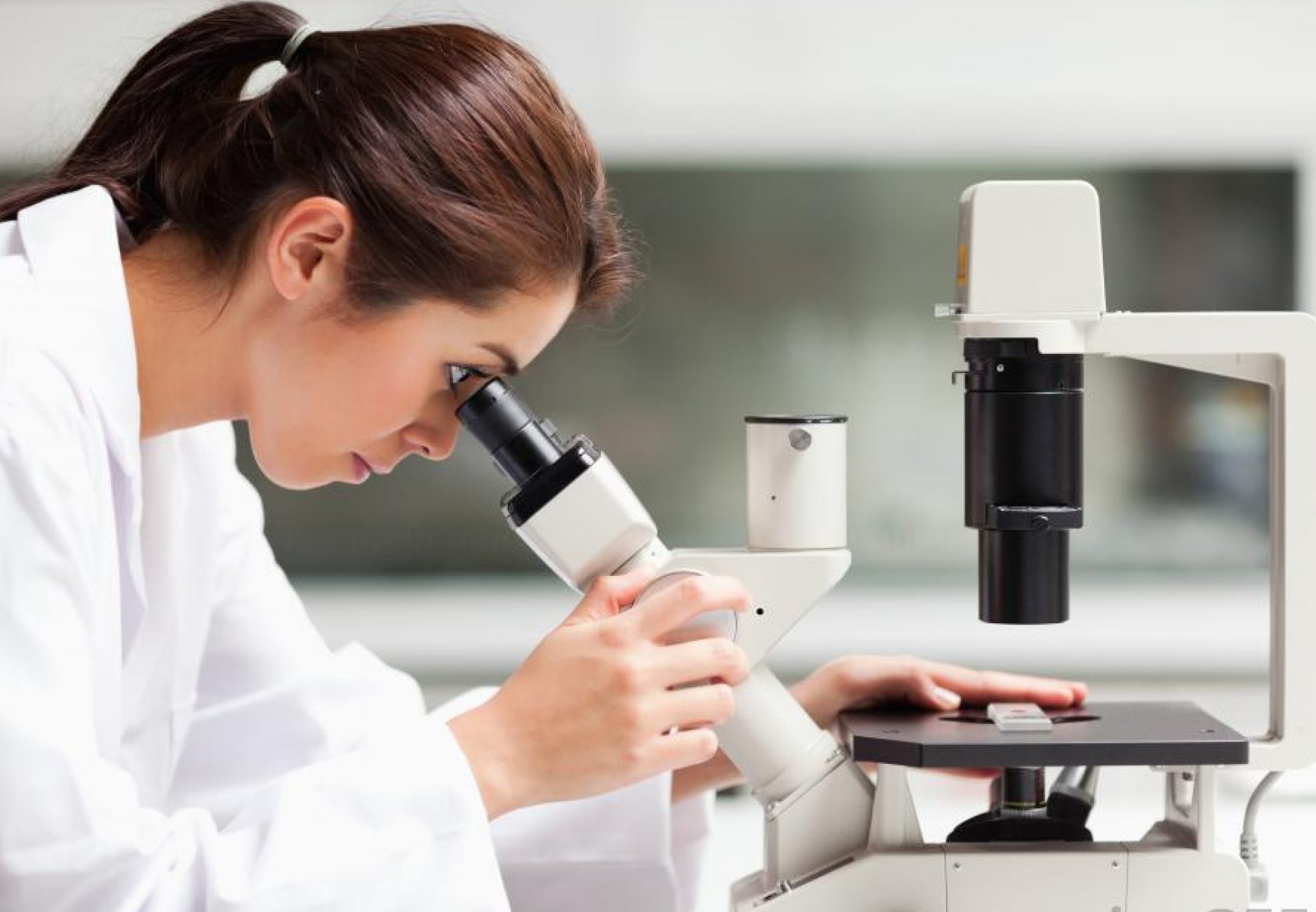 GJSPC Laboratory and Rudraksha Testing Service India